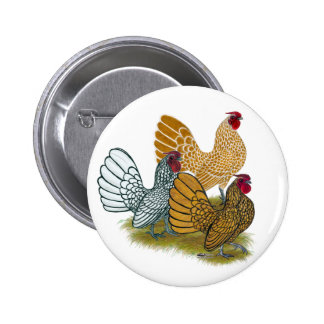 Sebright Rooster Assortment Pin