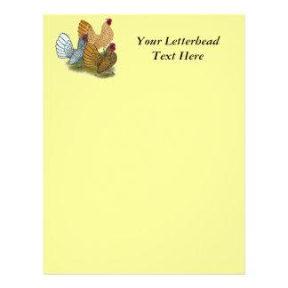 Sebright Rooster Assortment Letterhead