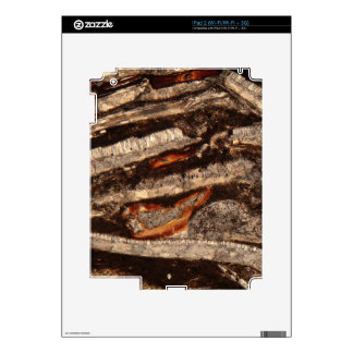 Sección fina de los fragmentos de cáscara iPad 2 skin
