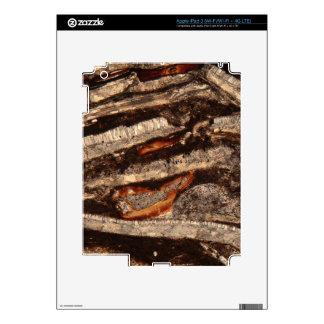 Sección fina de los fragmentos de cáscara iPad 3 skin