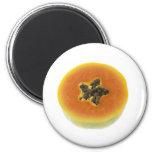 Sección representativa de una papaya imanes de nevera