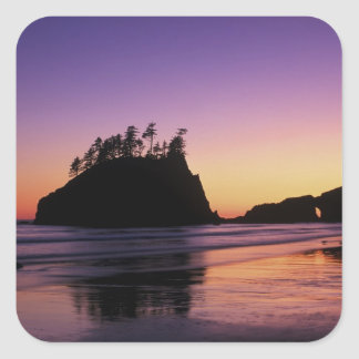 Second Beach at Twilight, Olympic NP, WA, USA Square Sticker