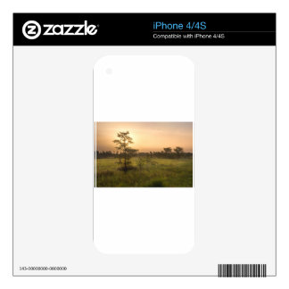 Second Dawn in Fakahatchee Strand Decal For The iPhone 4S