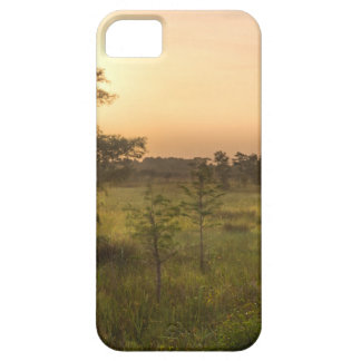 Second Dawn in Fakahatchee Strand iPhone SE/5/5s Case