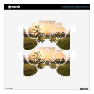 Second Dawn in Fakahatchee Strand PS3 Controller Decals