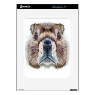 Second February - Marmot Day - Appreciation Day Decal For iPad