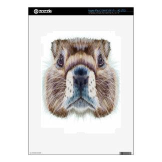 Second February - Marmot Day - Appreciation Day iPad 3 Skin