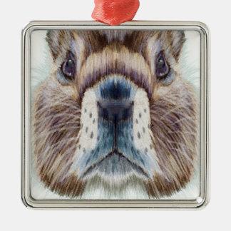 Second February - Marmot Day - Appreciation Day Metal Ornament