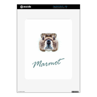 Second February - Marmot Day Decals For The iPad