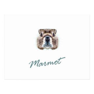 Second February - Marmot Day Postcard