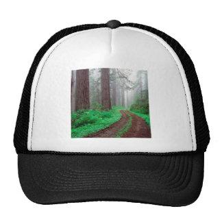 Secoya del bosque gorro de camionero
