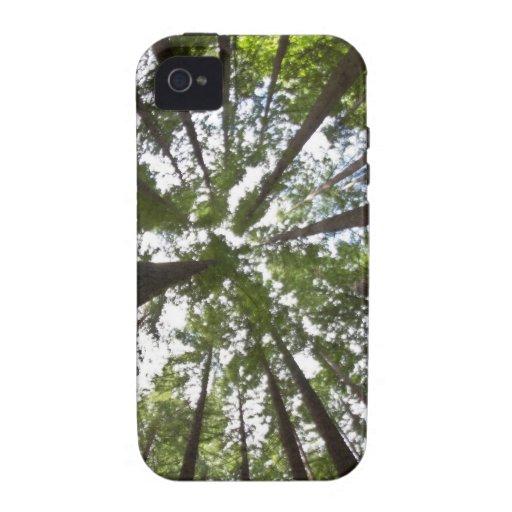 Secoyas al cielo iPhone 4 carcasa