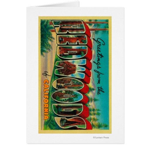 Secoyas, California - escenas grandes de la letra Tarjetón