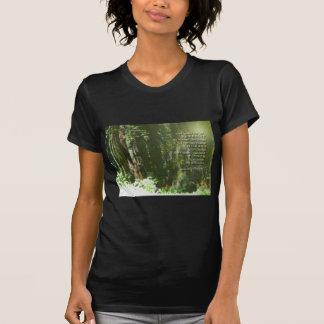 Secoyas del rezo de la serenidad tee shirts
