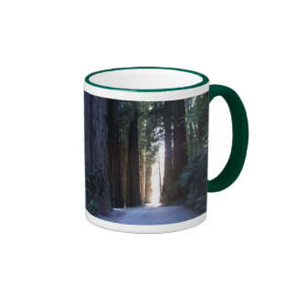 Secoyas magníficas taza de dos colores