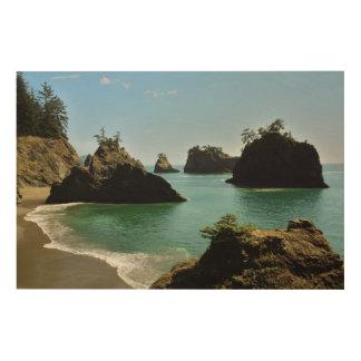 Secret Beach, Boardman State Park, Oregon, USA Wood Wall Decor