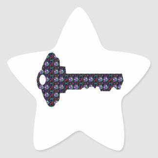 Secret Code Sparkle KEY NVN544 FUNNY GIFTS cuddle Star Sticker