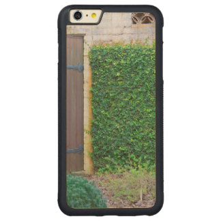 Secret Garden Carved® Maple iPhone 6 Plus Bumper Case