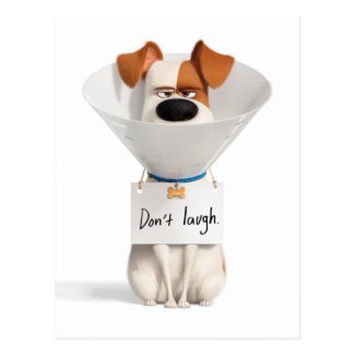 Secret Life of Pets | Max - Don't Laugh Postcard