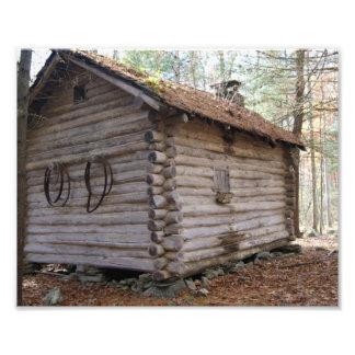 Secret Log Cabin 10 x 8 Photographic Print