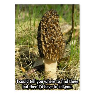 Secret of the Morel Hunter Postcard