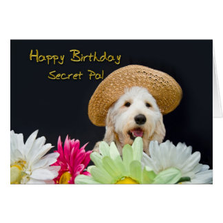 Secret Pal - Birthday Card