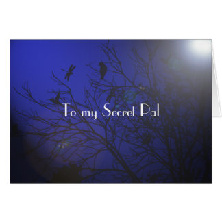 Secret Pal thoughts Card