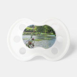 Secret pond on a beautiful sunny day pacifier