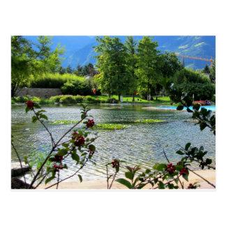Secret pond on a beautiful sunny day postcard