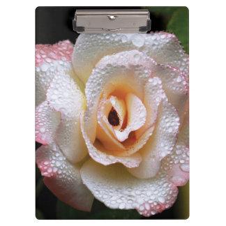 Secret Rose Clipboard