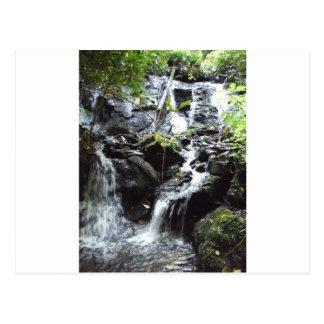 Secret Smoky Mountain Waterfall Postcard