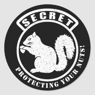 Secret Squirrel Patch Protecting Your Nuts Classic Round Sticker