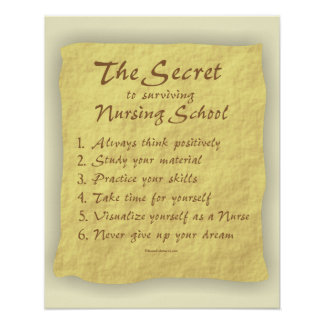 Secret to Surviving Nursing School Poser Poster