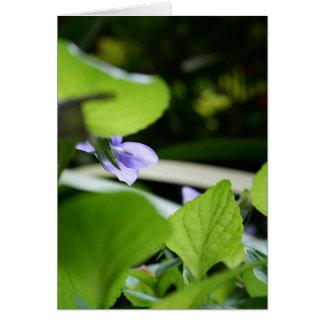 Secret Violet Floral Photography Greeting Card