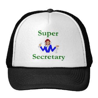 Secretaria estupenda Hat Gorro