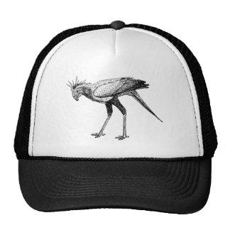 Secretaria negra y blanca pájaro del dibujo lineal gorra