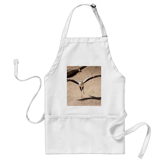 Secretary bird adult apron
