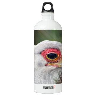 Secretary Bird of South Africa Aluminum Water Bottle