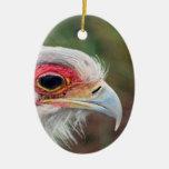 Secretary Bird of South Africa Christmas Ornaments