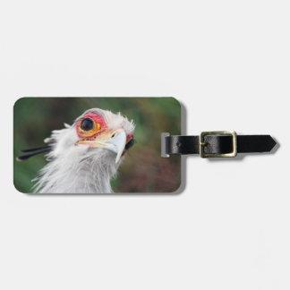 Secretary Bird of South Africa Luggage Tags