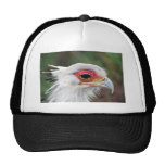 Secretary Bird of South Africa Mesh Hat