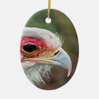 Secretary Bird of South Africa Double-Sided Oval Ceramic Christmas Ornament