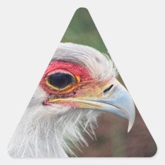 Secretary Bird of South Africa Triangle Sticker