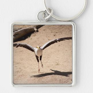 Secretary bird Silver-Colored square keychain