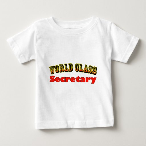 Secretary Shirt T-Shirt, Hoodie, Sweatshirt