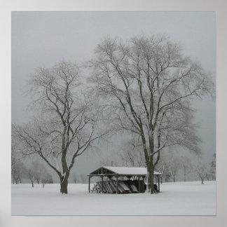 """Secreto"" - la nieve cubrió paisaje Poster"