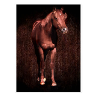 Secretrock el caballo postal