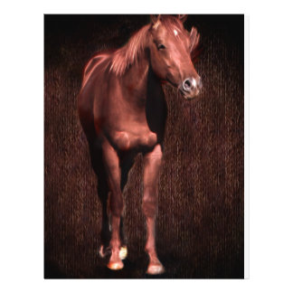 Secretrock the horse flyer