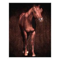 Secretrock the horse letterhead
