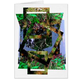 secrets of nature I Card